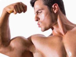 Как увеличить тестостерон в организме мужчины фото