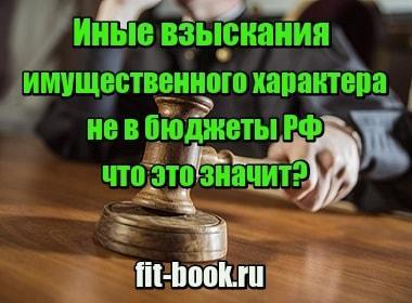 Фотография Иные взыскания имущественного характера не в бюджеты РФ – что это значит