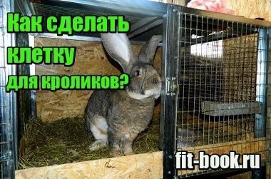 Миниатюра Как сделать клетку для кроликов своими руками в домашних условиях