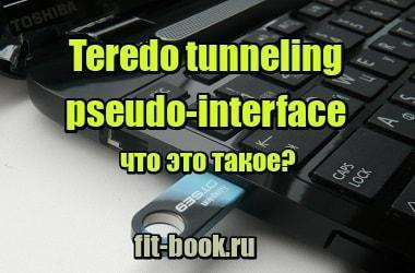 Фото Teredo tunneling pseudo-interface - что это такое?