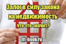 Миниатюра Залог в силу закона на недвижимость – что это значит?