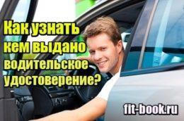 Изображение Как узнать, кем выдано водительское удостоверение
