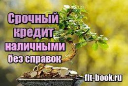 Фото Срочный кредит наличными без справок