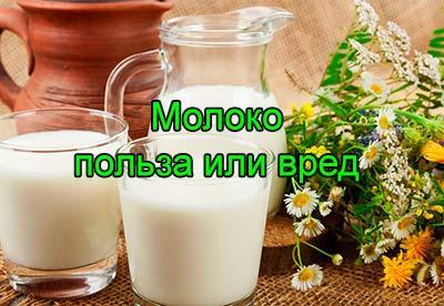 Молоко - польза или вред для детей и взрослых